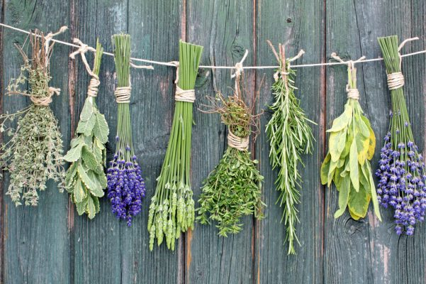 How to make a DIY herb brush